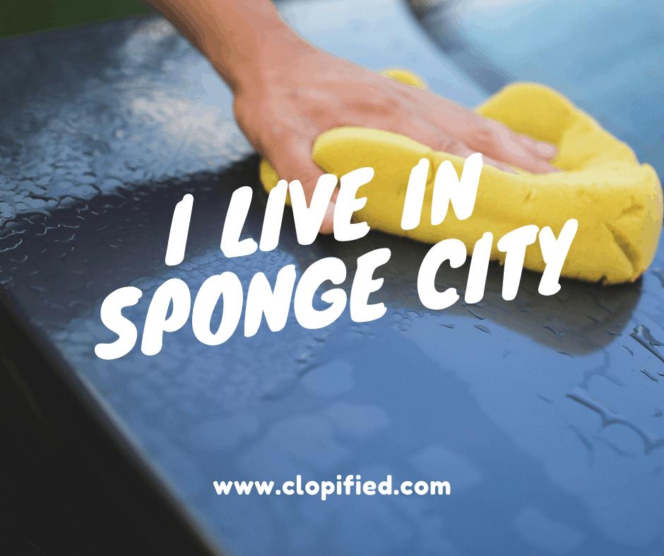 I Live in Sponge City